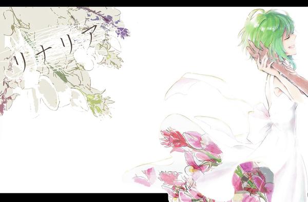 花 言葉 リナリア