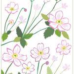 秋明菊の花言葉、英語名は?驚きの名前由来とは?