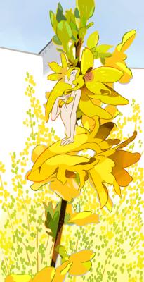 言葉 レンギョウ 花 レンギョウの花咲く
